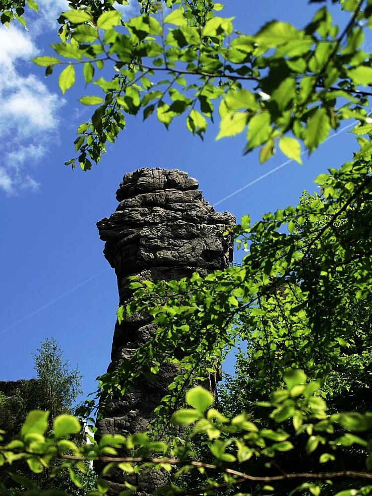 Der Fels im Wald