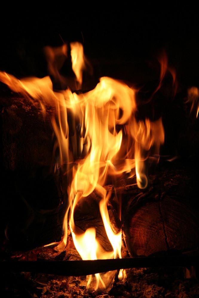 der feuergeist