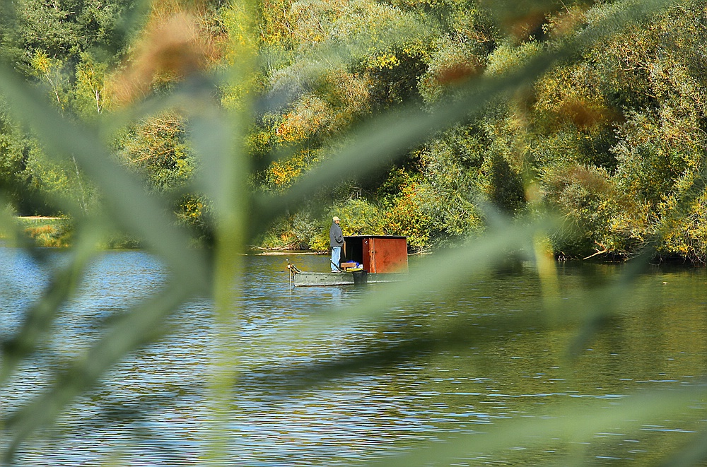 Der Fischer vom Weitmannssee