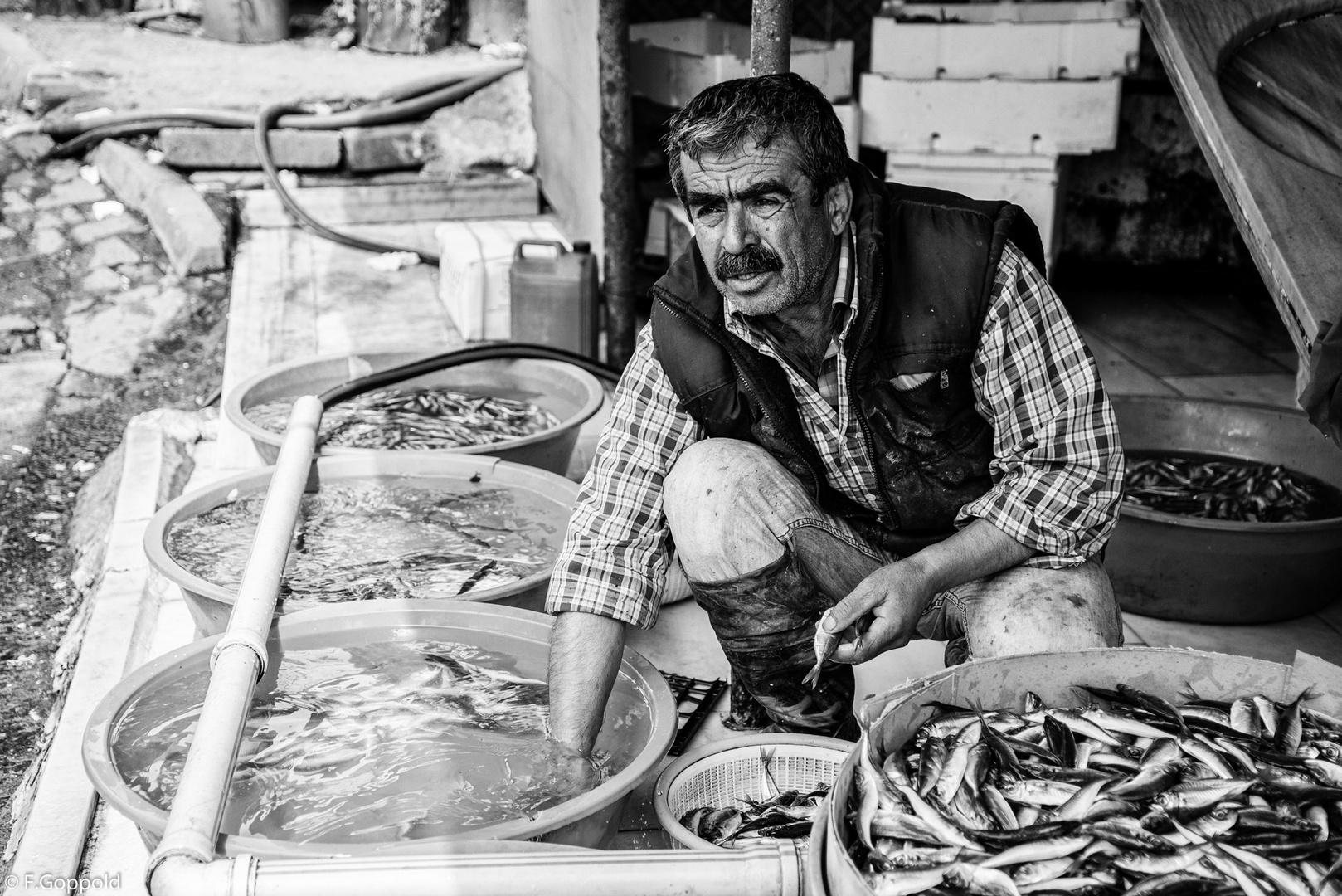 Der Fischmarkt von Karaköy