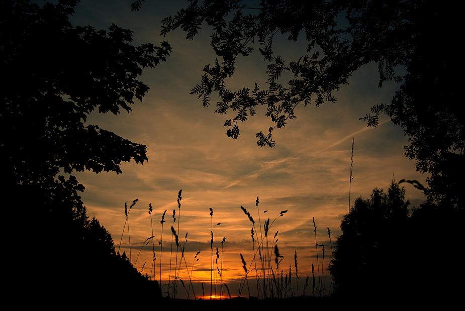 der fließende Übergang zwischen Tag und Nacht