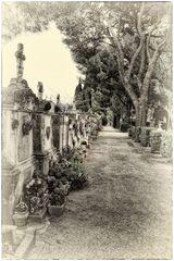 Der Friedhof von L'Isle-sur-la-Sorgue