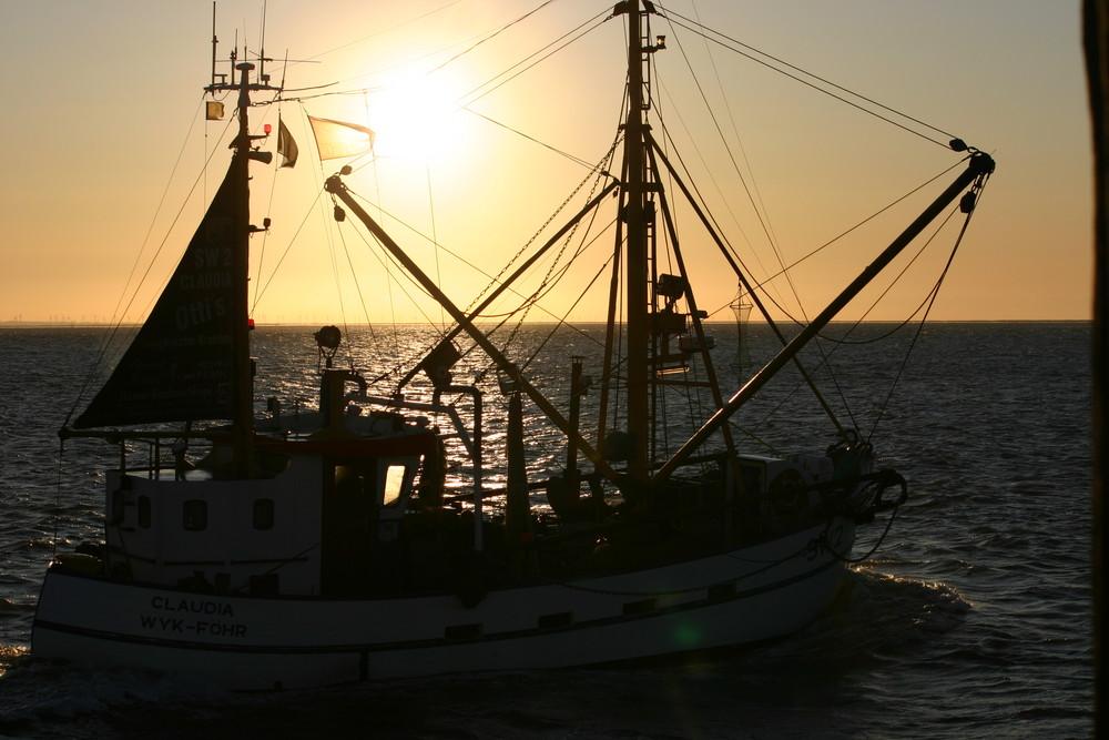 Der frühe Fischer fängt den Fisch