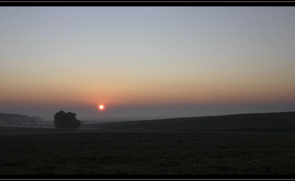 Der frühe Morgen II