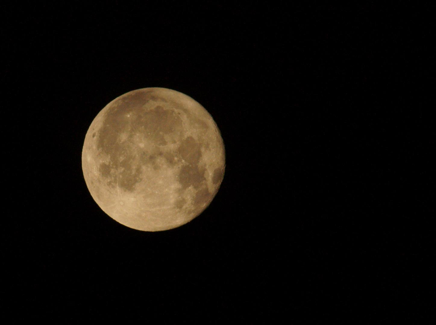 Der frühe Vogel fängt den Mond