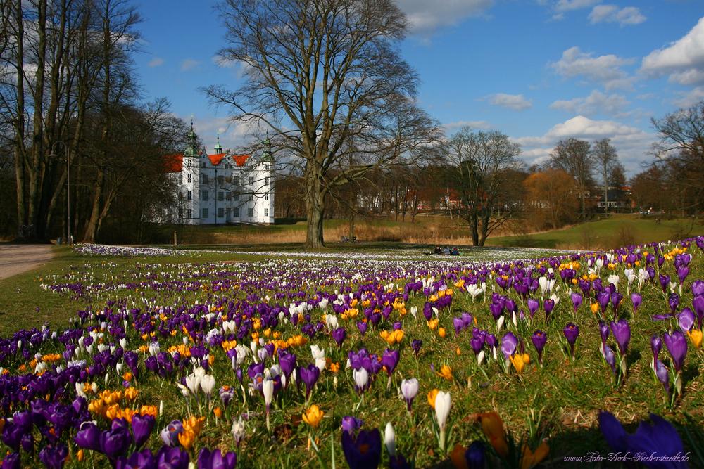 Der Frühling ist endlich da :)