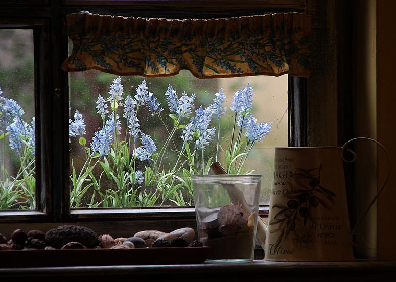 Der Frühling klopft ans Fenster
