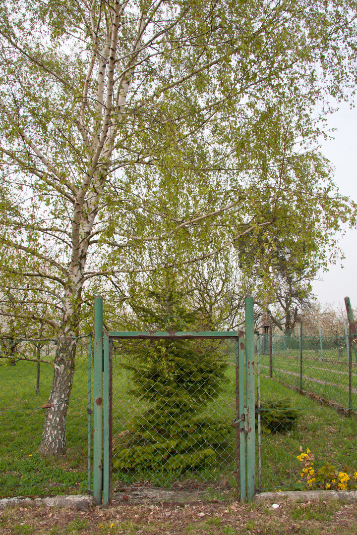 Der Frühling macht auch vor dem Tor nicht halt......