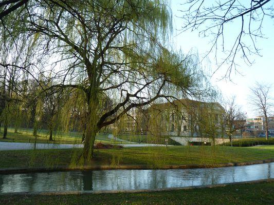 Englischer Garten Fotos Bilder Auf Fotocommunity