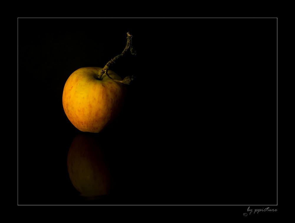 Der Gartenapfel