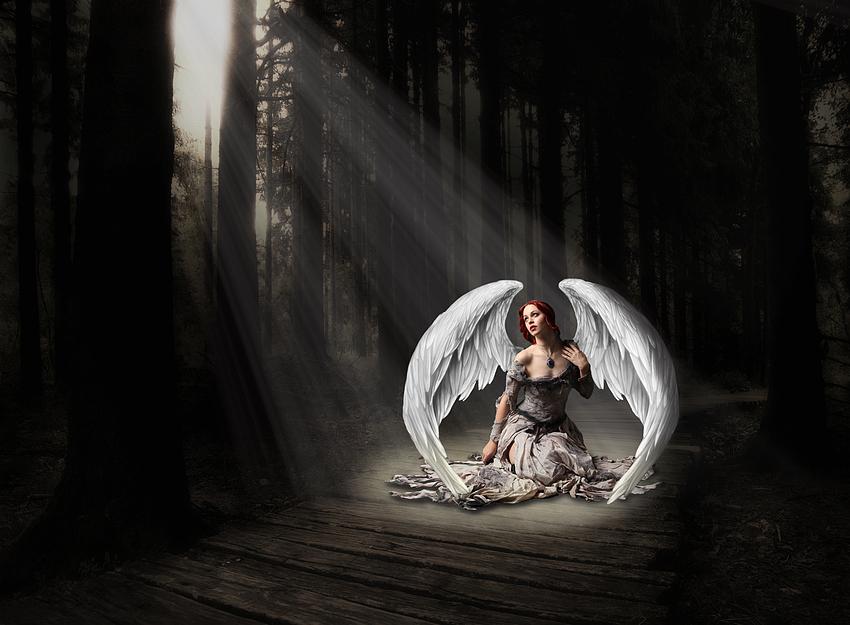 Der gefallene Engel.....