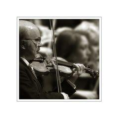 der Geigenspieler....