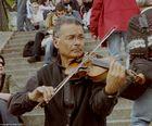 Der Geigenspieler