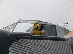 Der gelbe Bär hilft beim Runup Check