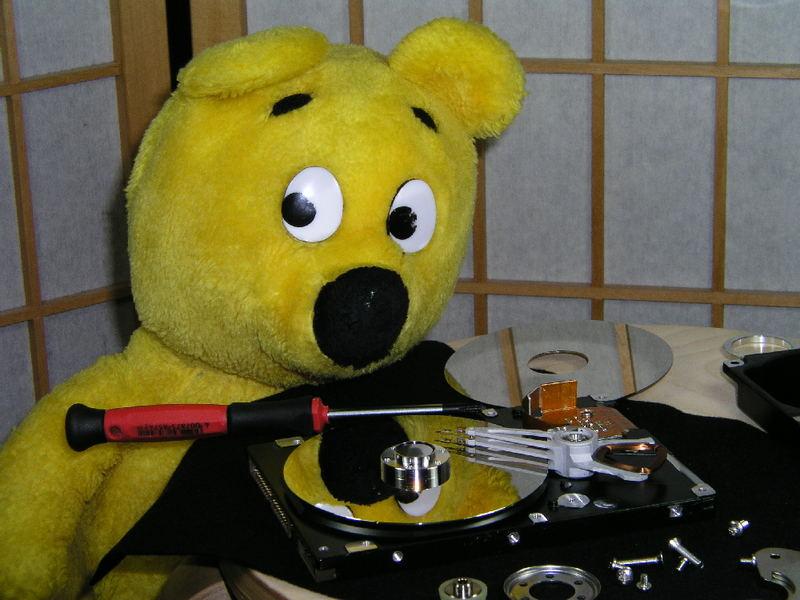Der gelbe Bär hilft... Daten retten