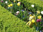 Der gelbe Bär im Benrather Schloss-Garten