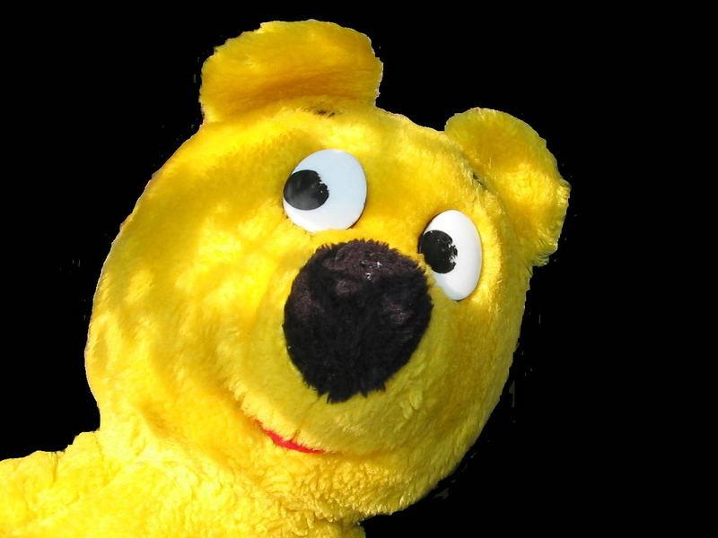Gelbe Bilder der gelbe bär logo foto bild der gelbe bär bilder auf
