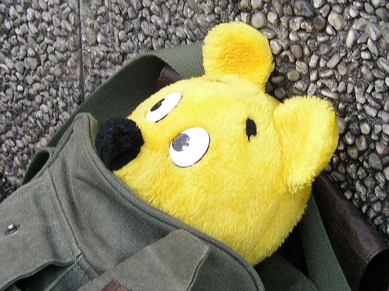 Der gelbe Bär nach dem Zoobesuch