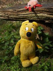 Der gelbe Bär warnt - Zeckenzeit