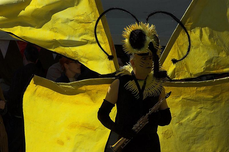 der gelbe Schmetterling