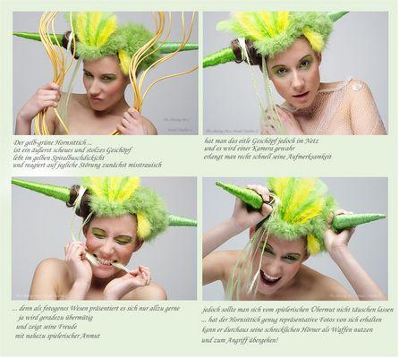 Der gelbgrüne Hornsittich ;-)
