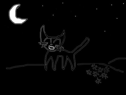 der gesang der katzendame