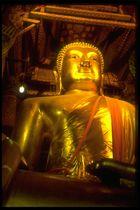 Der goldene Buddha