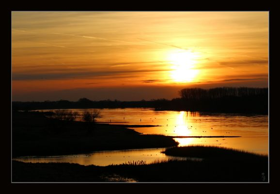 Der goldene Fluß