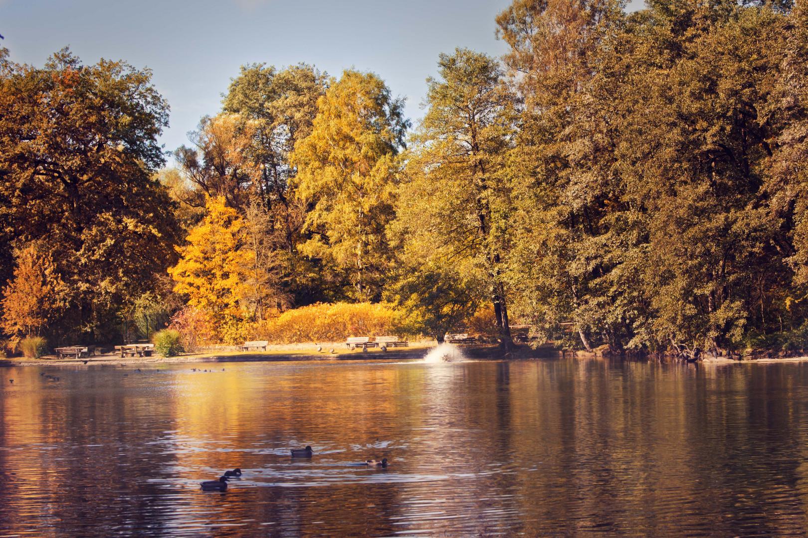 Der goldene Herbst