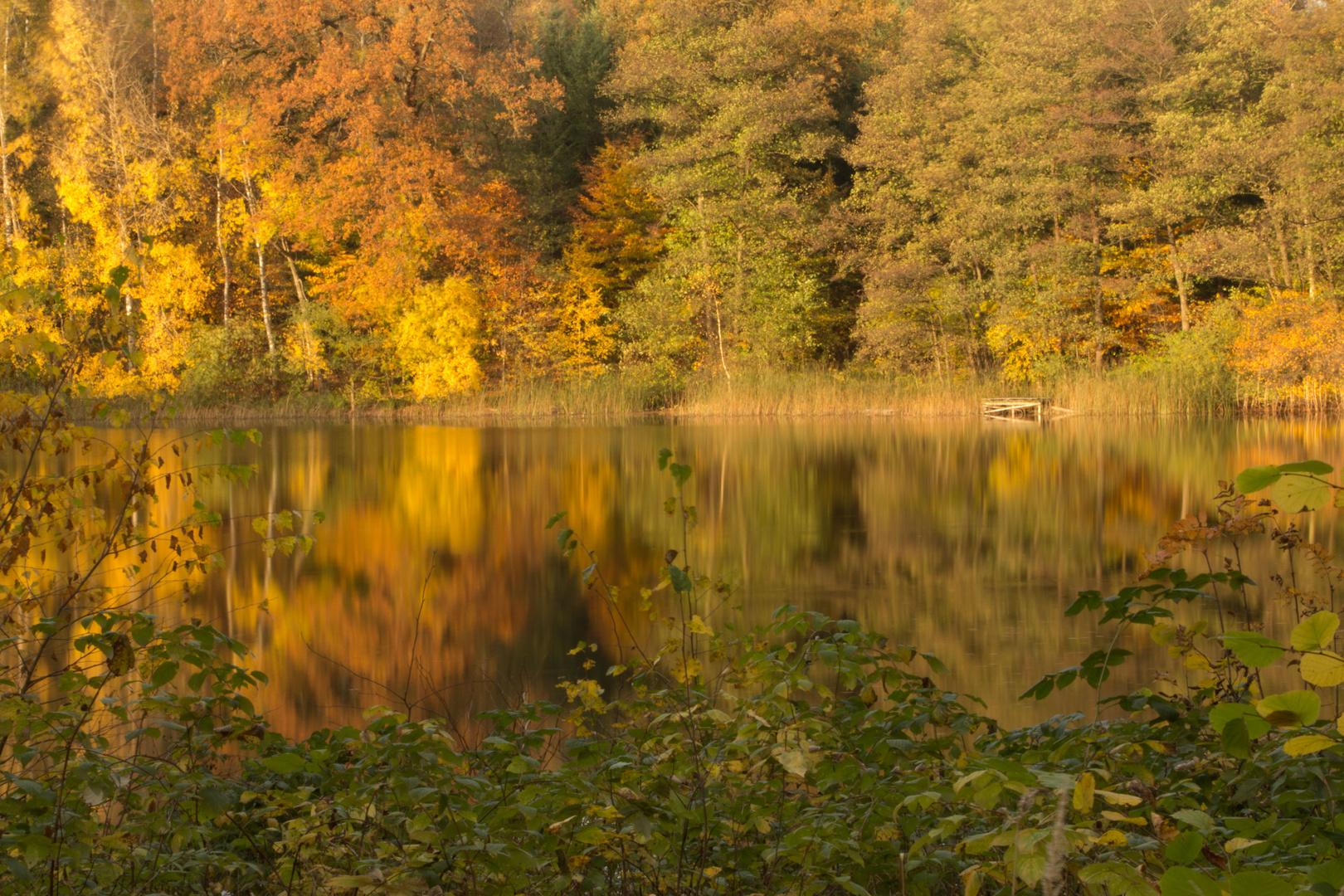 Der goldene Oktober...