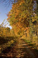 Der goldene Weg.....