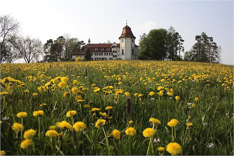 der Gottesberg bei Bad Wurzach