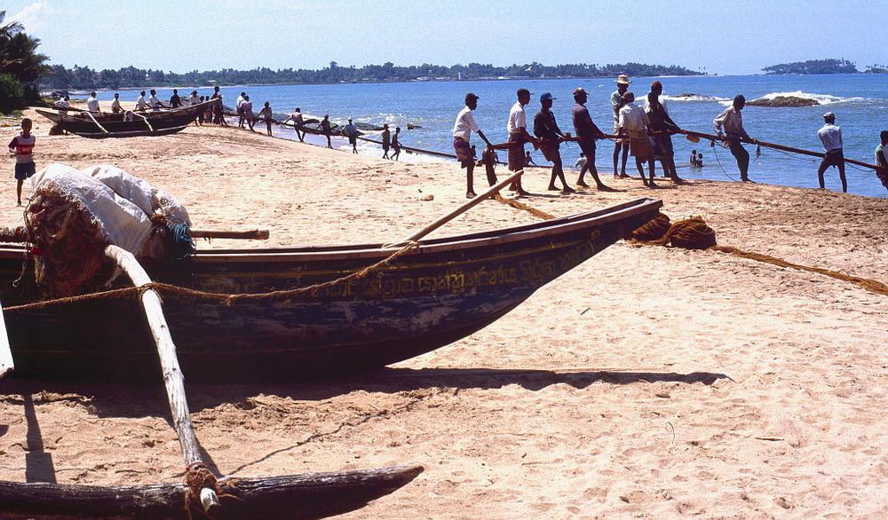 """"""" Der große Fang """" , Sri Lanka"""