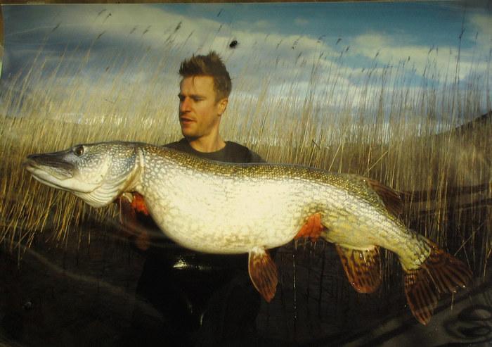 Der große Fischer Alex