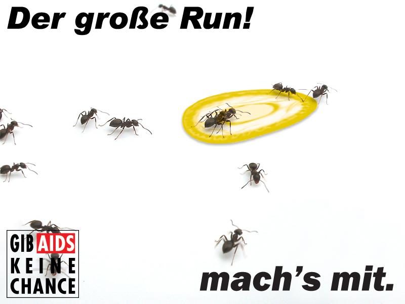 Der große run!