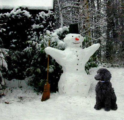 Der große Schneemann