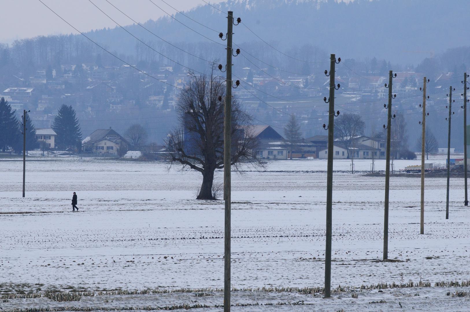 Der grosse Winter