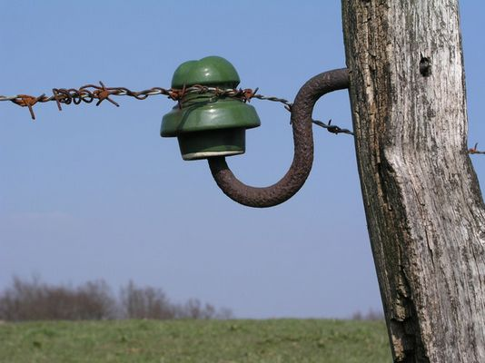 Der grüne Isolator