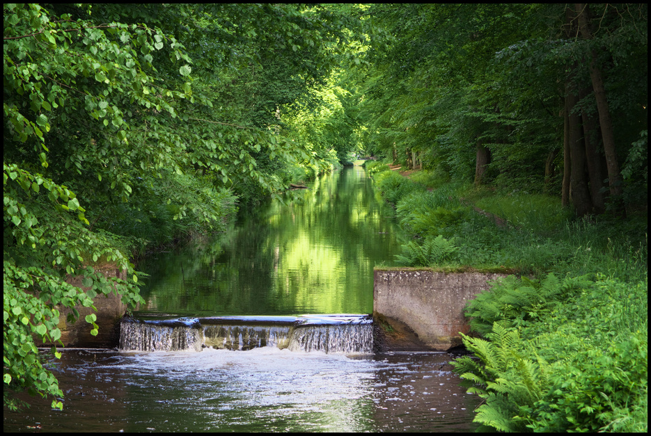 Der grüne Kanal