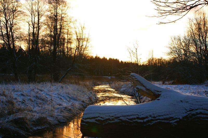 Der güldene Fluss
