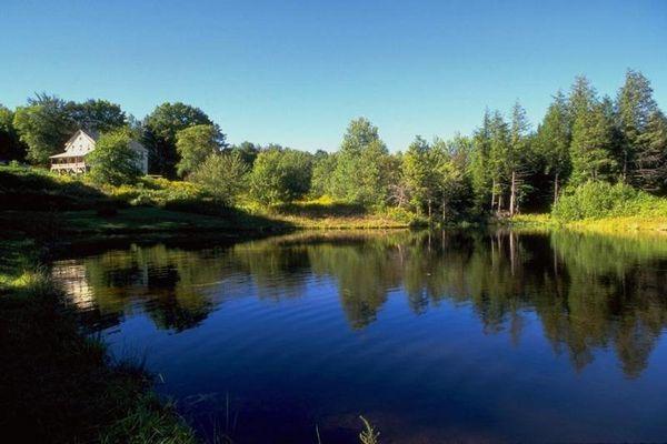 Der Hackpfülische See im Landkreis Sangerhausen