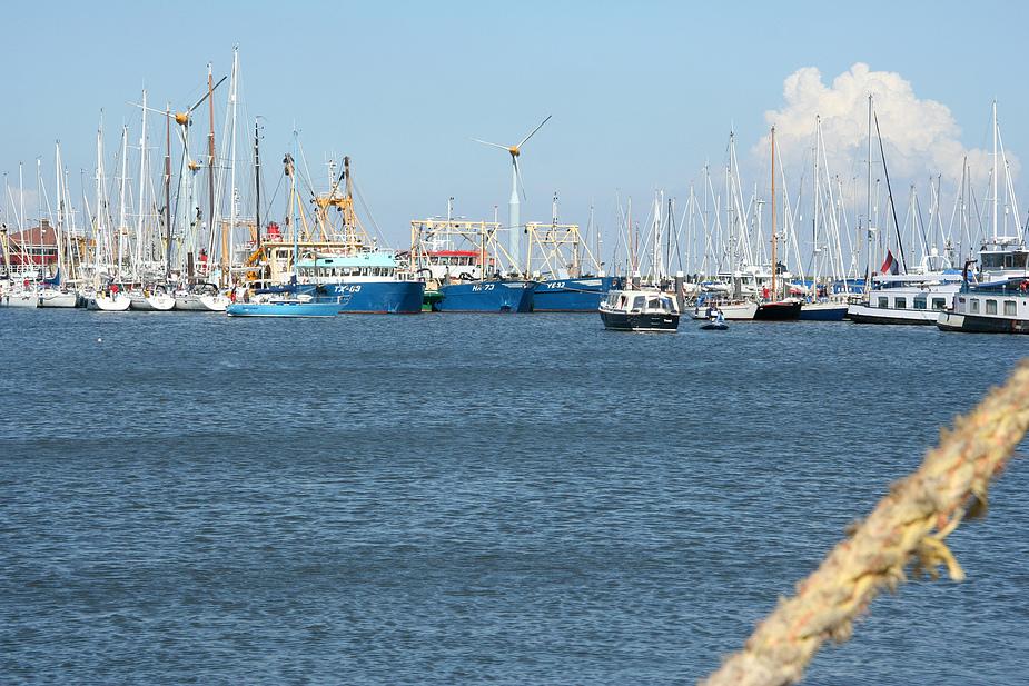 der Hafen füllt sich
