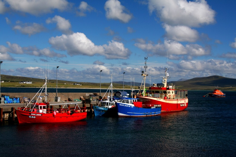Der Hafen in Ballyglass...