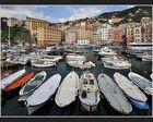 Der Hafen von Camogli