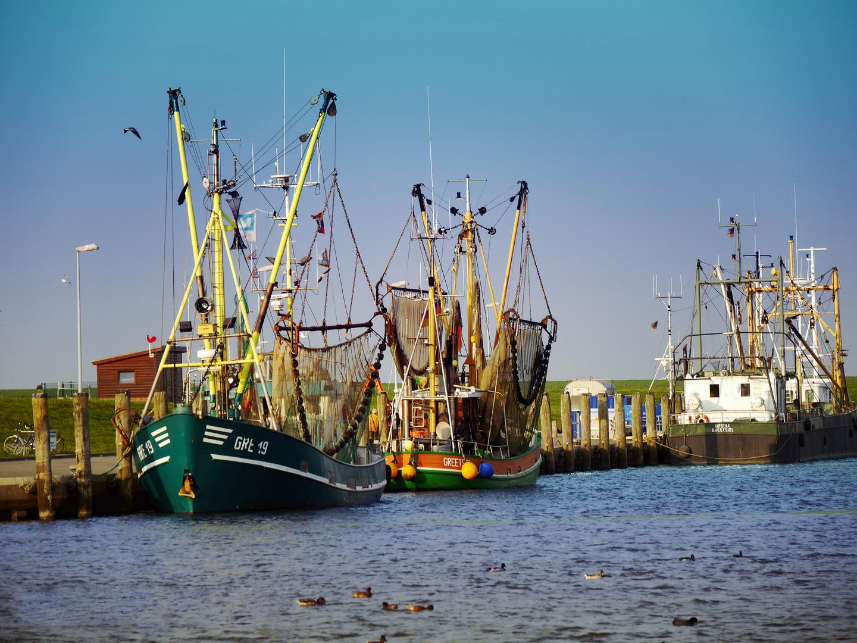 Der Hafen von Greetsiel 2