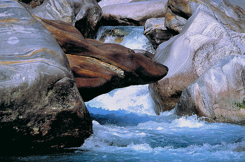 Der Hai aus Granit