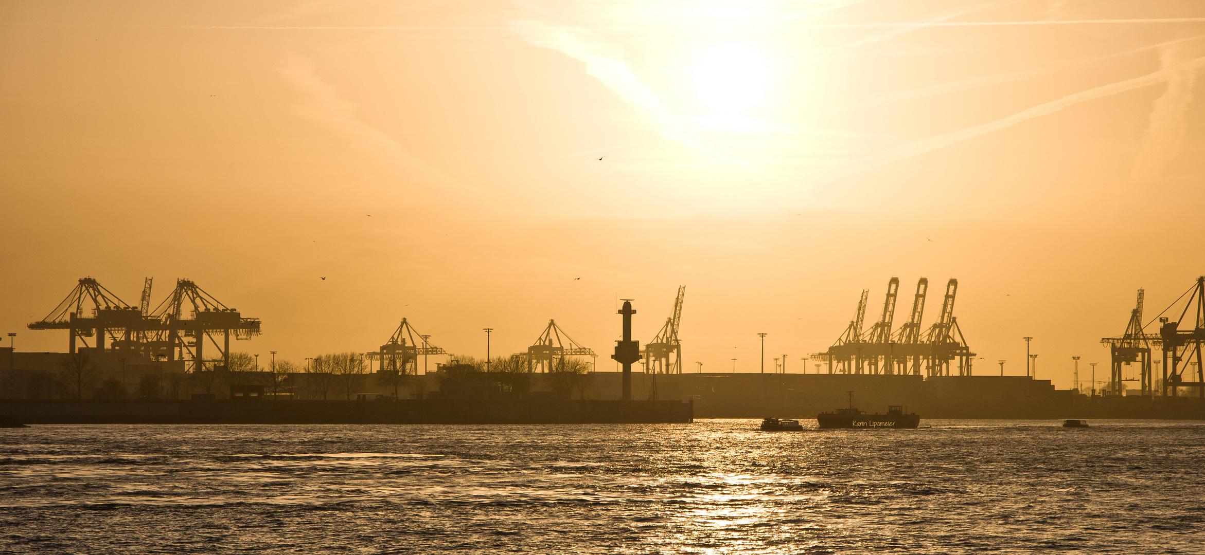 der Hamburger Hafen in der Abendsonne