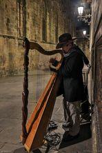 Der Harfenist