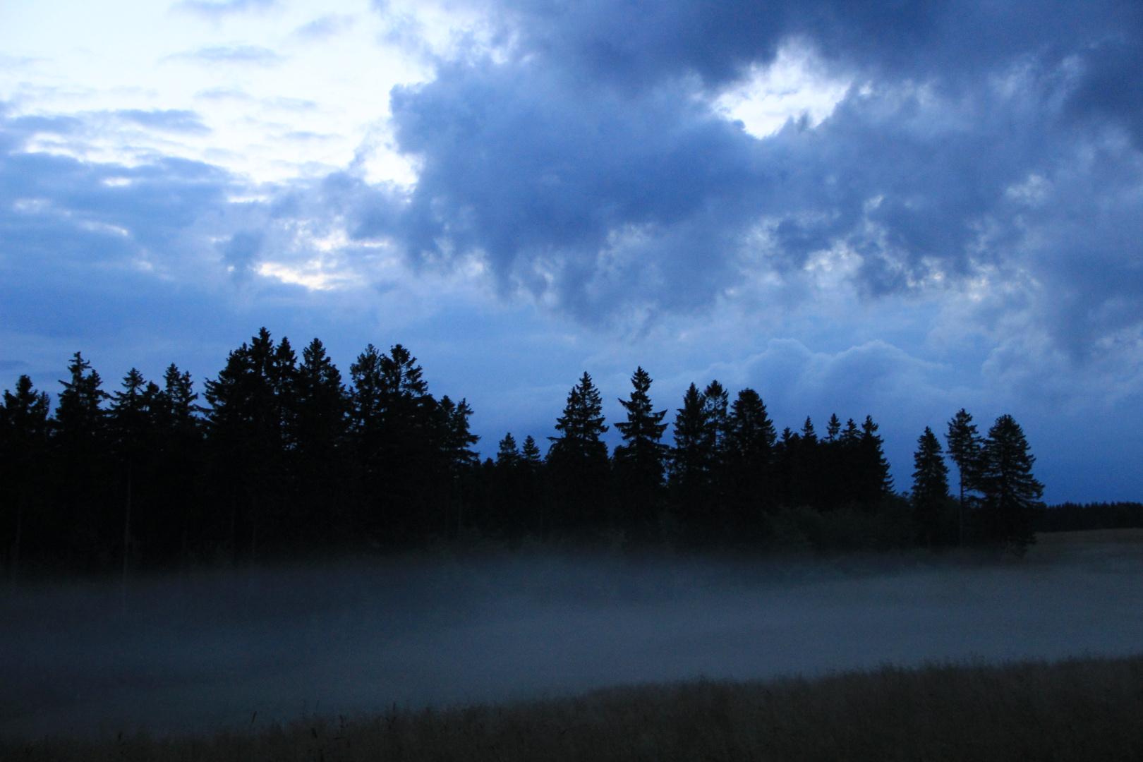 Der Harz am frühen Abend