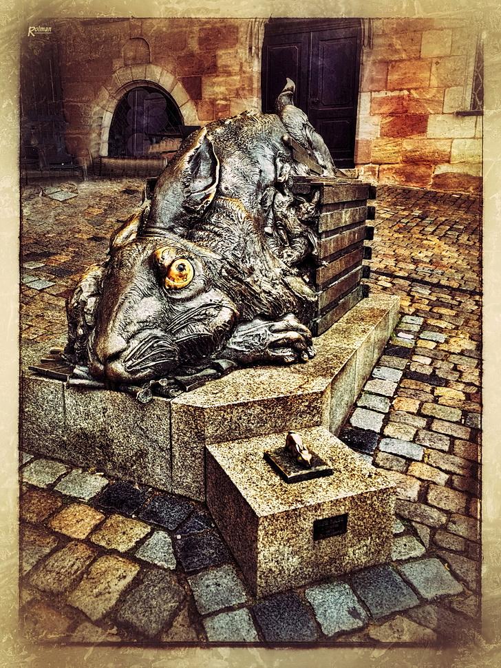 Der Hase (Albrecht Dürer)